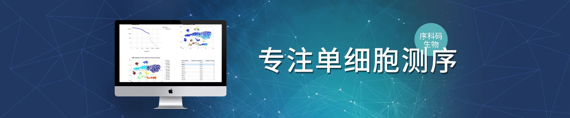 广州-序科码生物
