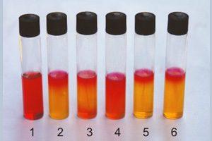 A332-蛋白形态相关实验